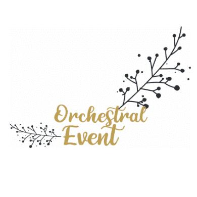 Mission réalisée pour Orchestral Event